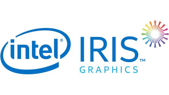 Intel HD/UHD/Iris/Pro Graphics Driver
